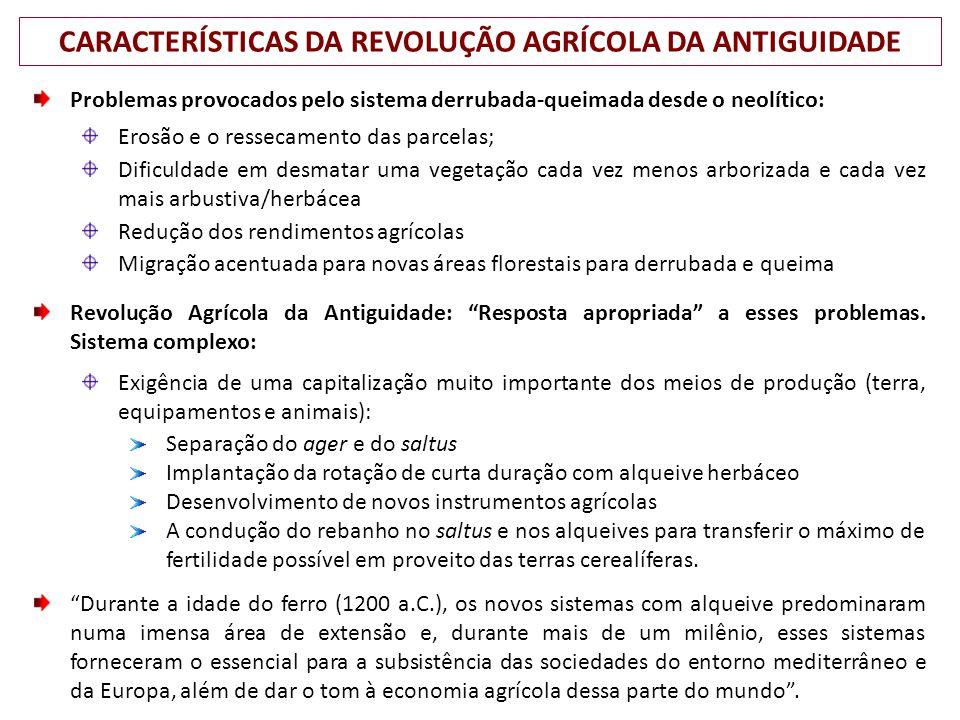 CARACTERÍSTICAS DA REVOLUÇÃO AGRÍCOLA DA ANTIGUIDADE