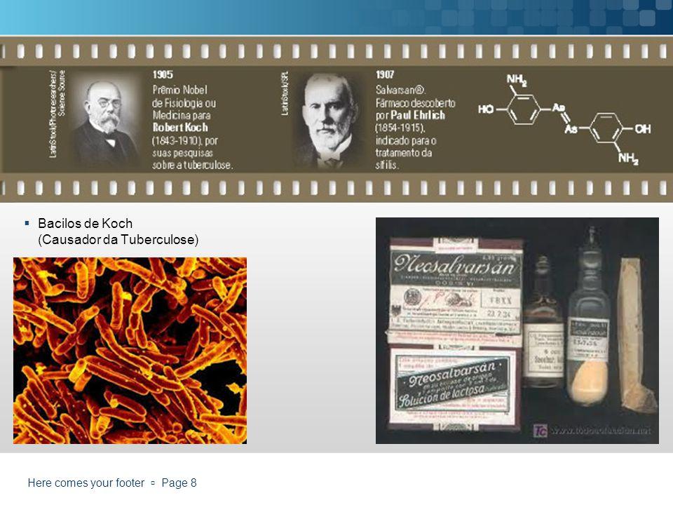 Bacilos de Koch (Causador da Tuberculose)