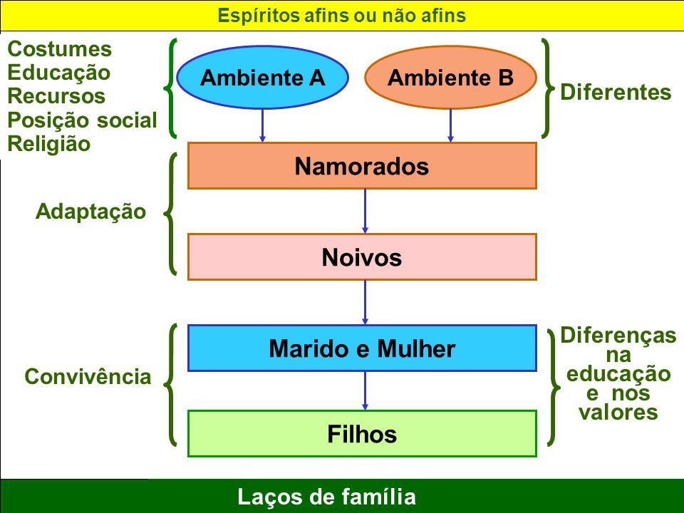 Espíritos afins ou não afins Diferenças na educação e nos valores
