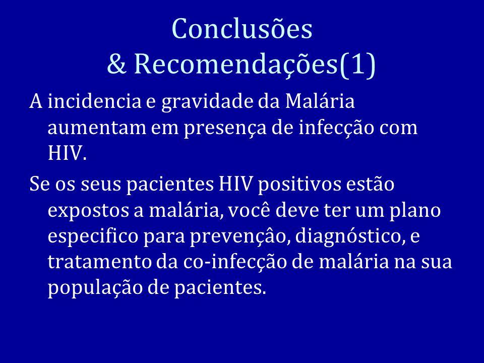 Conclusões & Recomendações(1)