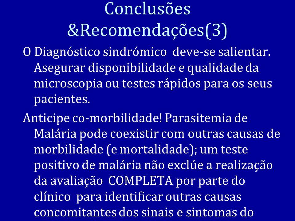 Conclusões &Recomendações(3)