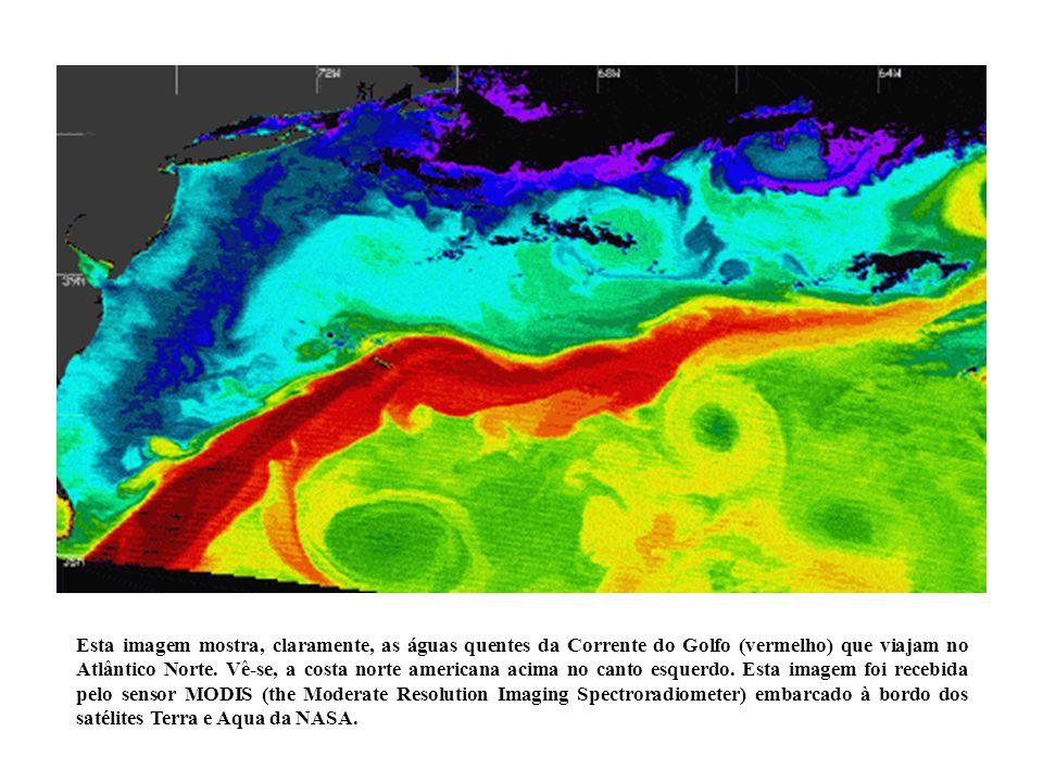 Esta imagem mostra, claramente, as águas quentes da Corrente do Golfo (vermelho) que viajam no Atlântico Norte.