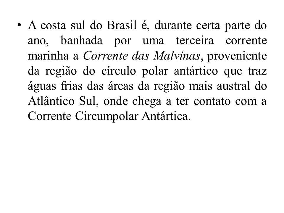 A costa sul do Brasil é, durante certa parte do ano, banhada por uma terceira corrente marinha a Corrente das Malvinas, proveniente da região do círculo polar antártico que traz águas frias das áreas da região mais austral do Atlântico Sul, onde chega a ter contato com a Corrente Circumpolar Antártica.