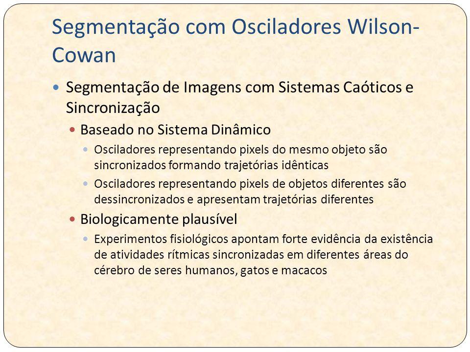Segmentação com Osciladores Wilson-Cowan