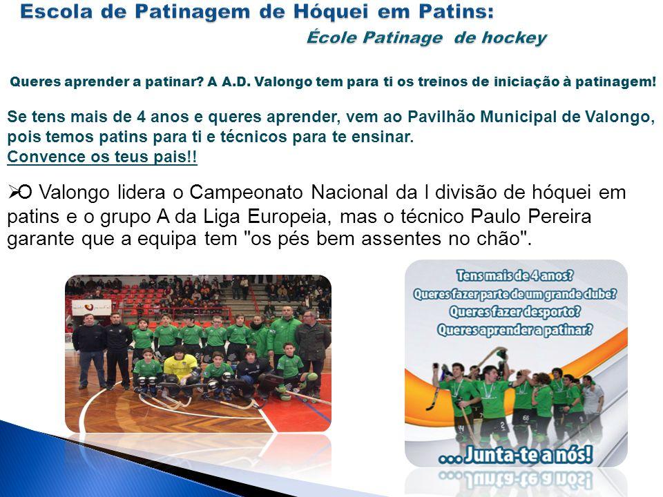 Escola de Patinagem de Hóquei em Patins: École Patinage de hockey