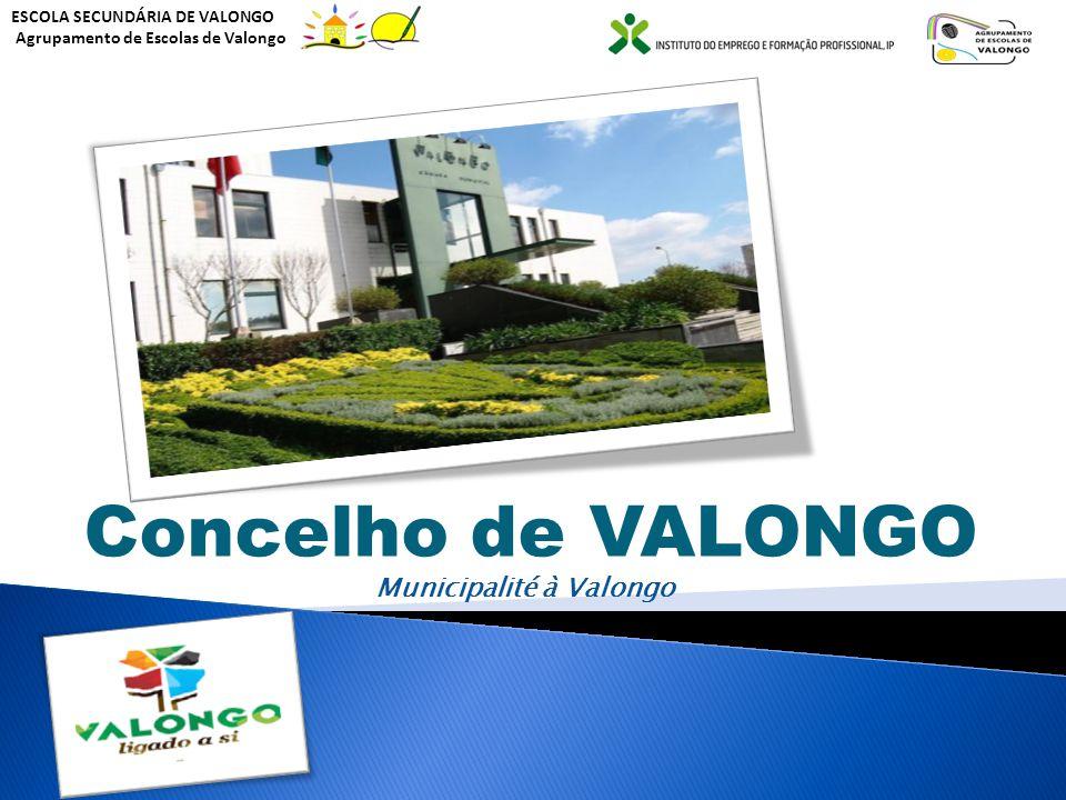 Concelho de VALONGO Municipalité à Valongo