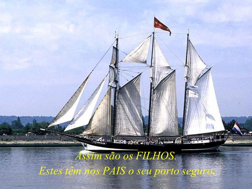 Assim são os FILHOS. Estes têm nos PAIS o seu porto seguro.