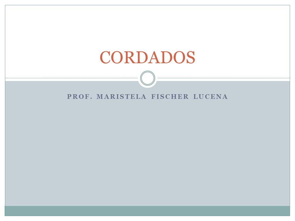 PROF. Maristela fischer lucena