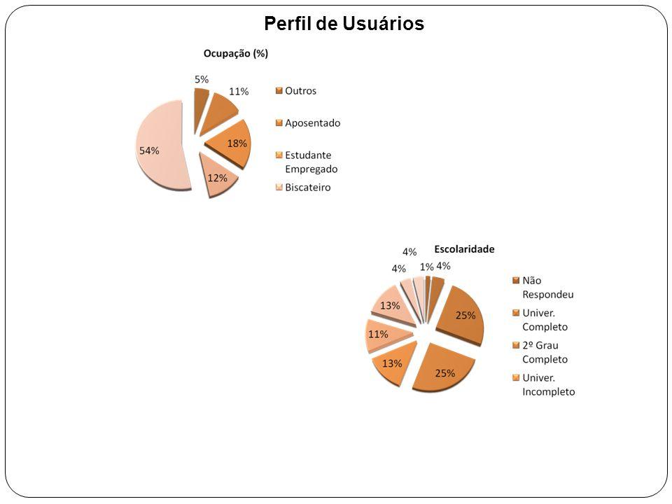 Perfil de Usuários