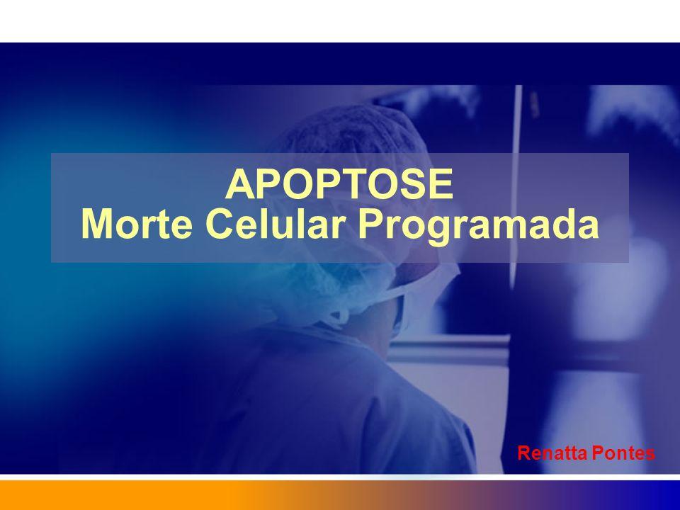 APOPTOSE Morte Celular Programada