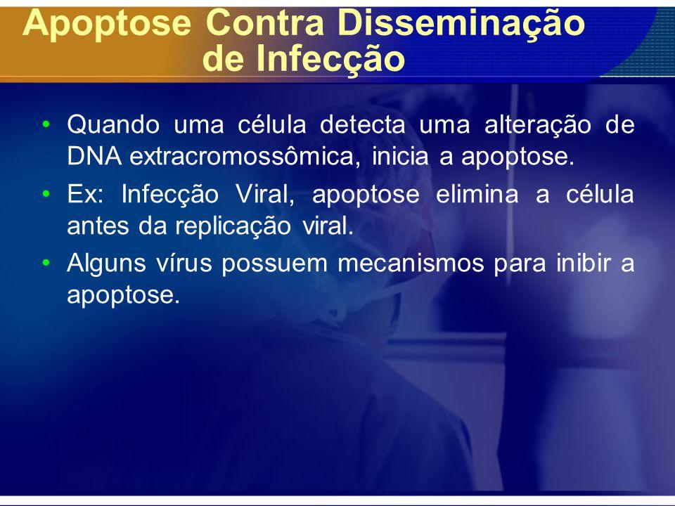 Apoptose Contra Disseminação de Infecção