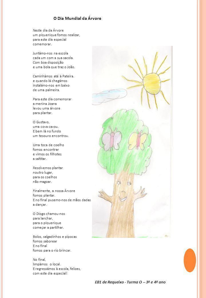 O Dia Mundial da Árvore EB1 de Requeixo - Turma O – 3º e 4º ano