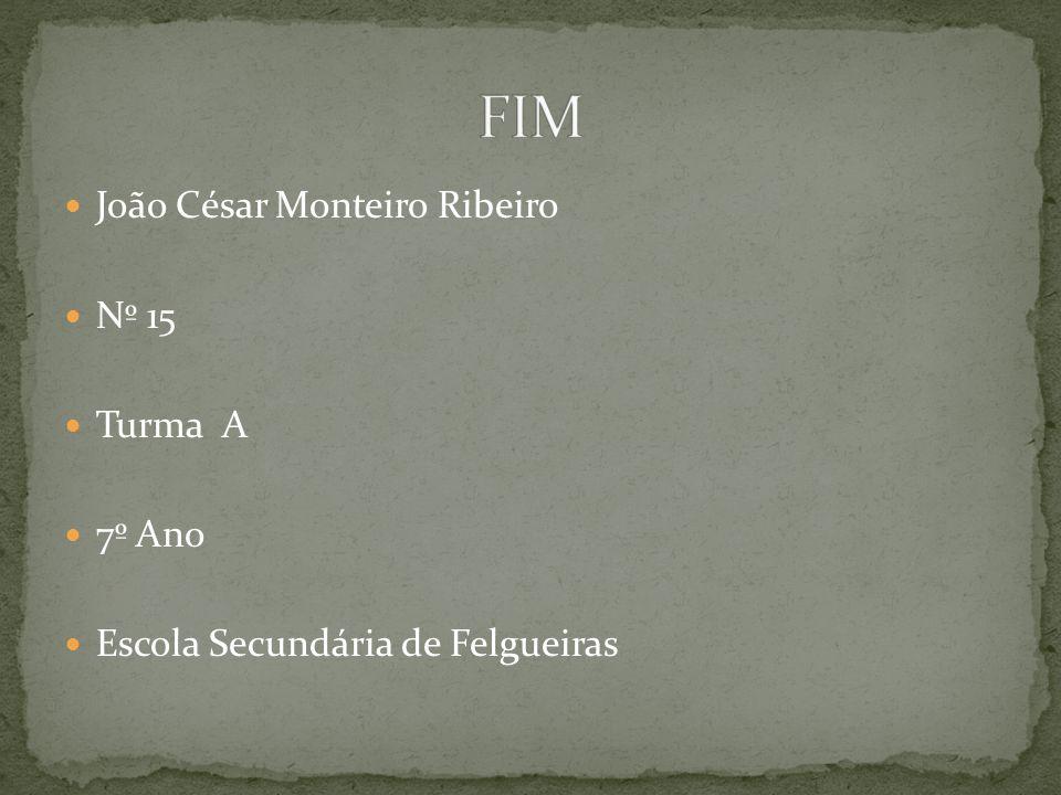 FIM João César Monteiro Ribeiro Nº 15 Turma A 7º Ano