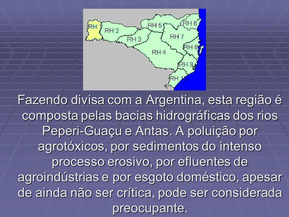 Fazendo divisa com a Argentina, esta região é composta pelas bacias hidrográficas dos rios Peperi-Guaçu e Antas.