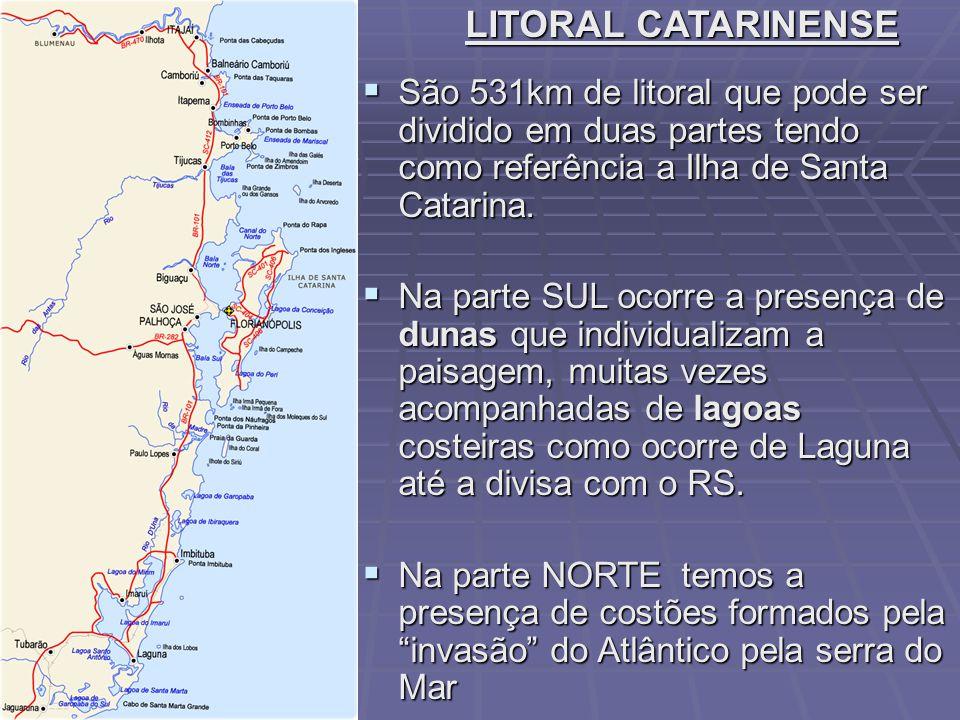 LITORAL CATARINENSE São 531km de litoral que pode ser dividido em duas partes tendo como referência a Ilha de Santa Catarina.