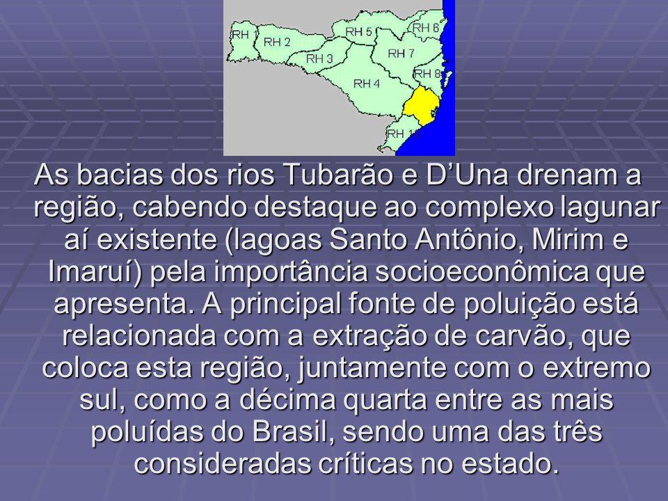 As bacias dos rios Tubarão e D'Una drenam a região, cabendo destaque ao complexo lagunar aí existente (lagoas Santo Antônio, Mirim e Imaruí) pela importância socioeconômica que apresenta.