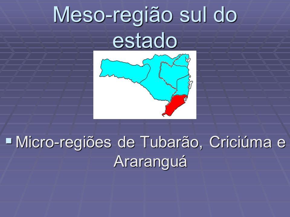 Meso-região sul do estado