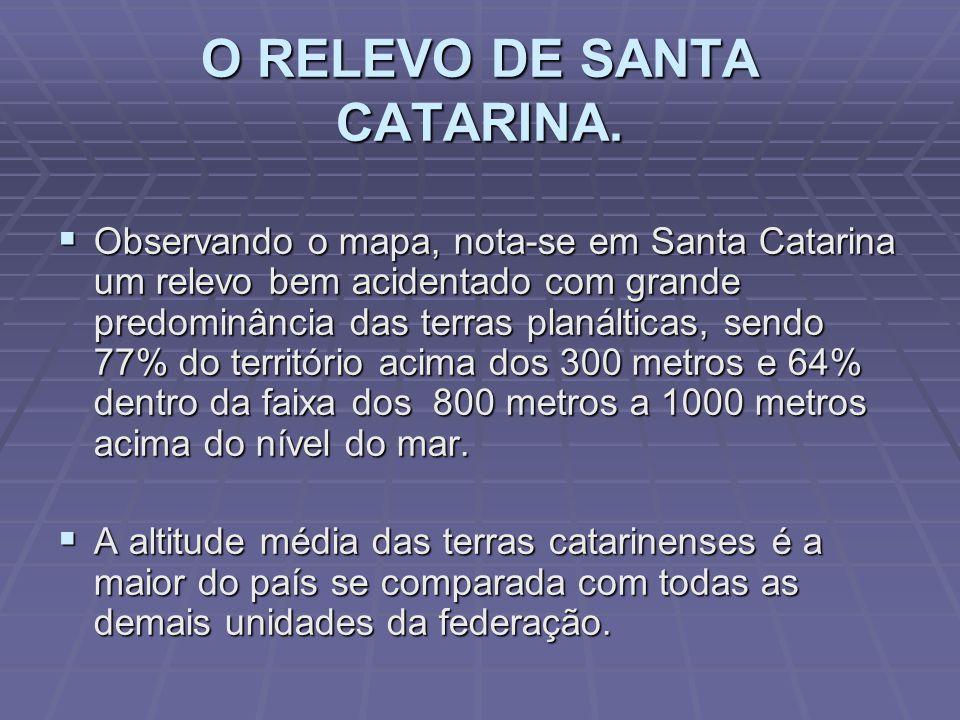 O RELEVO DE SANTA CATARINA.