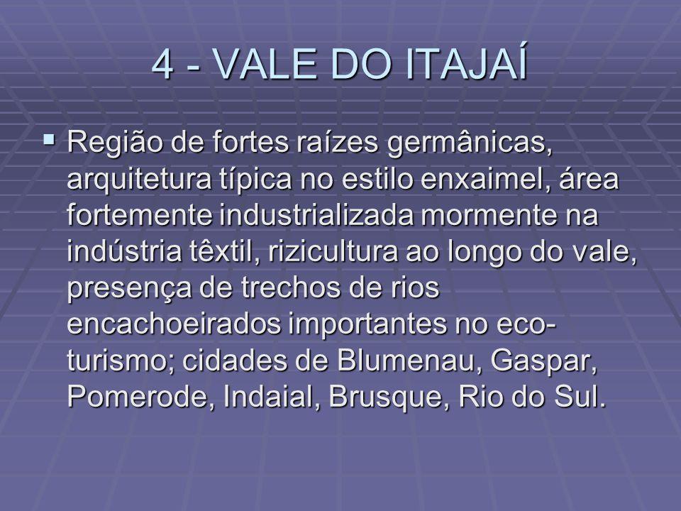4 - VALE DO ITAJAÍ