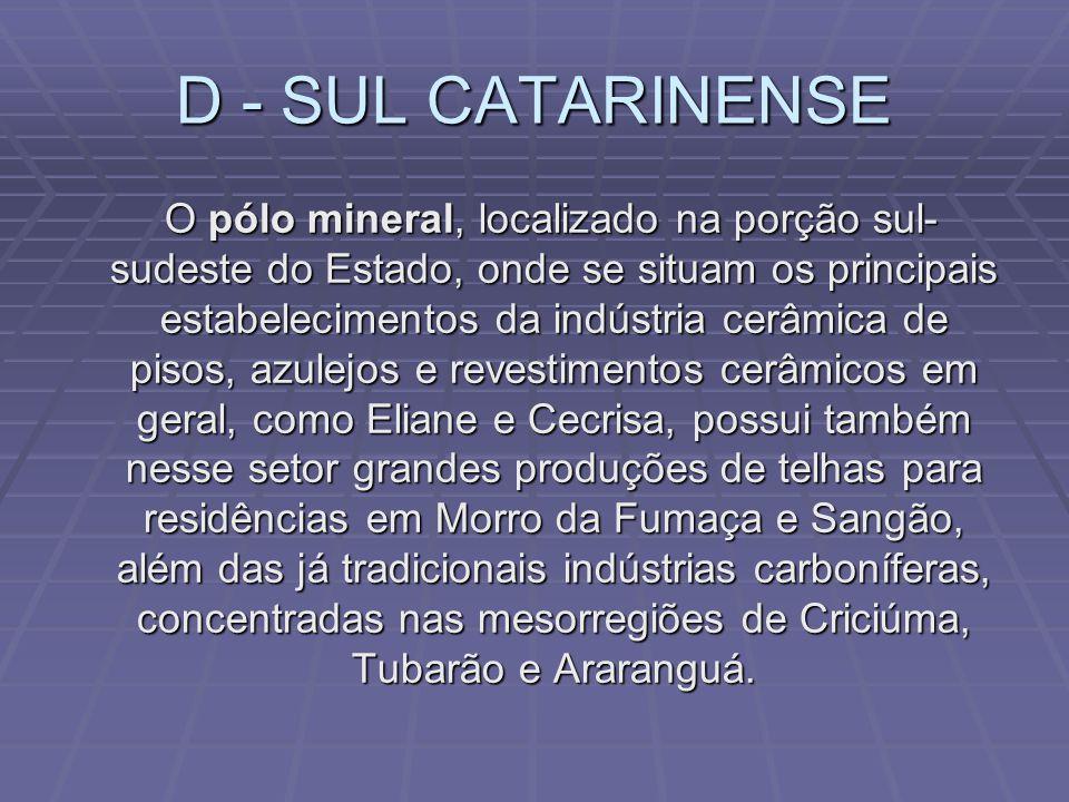 D - SUL CATARINENSE