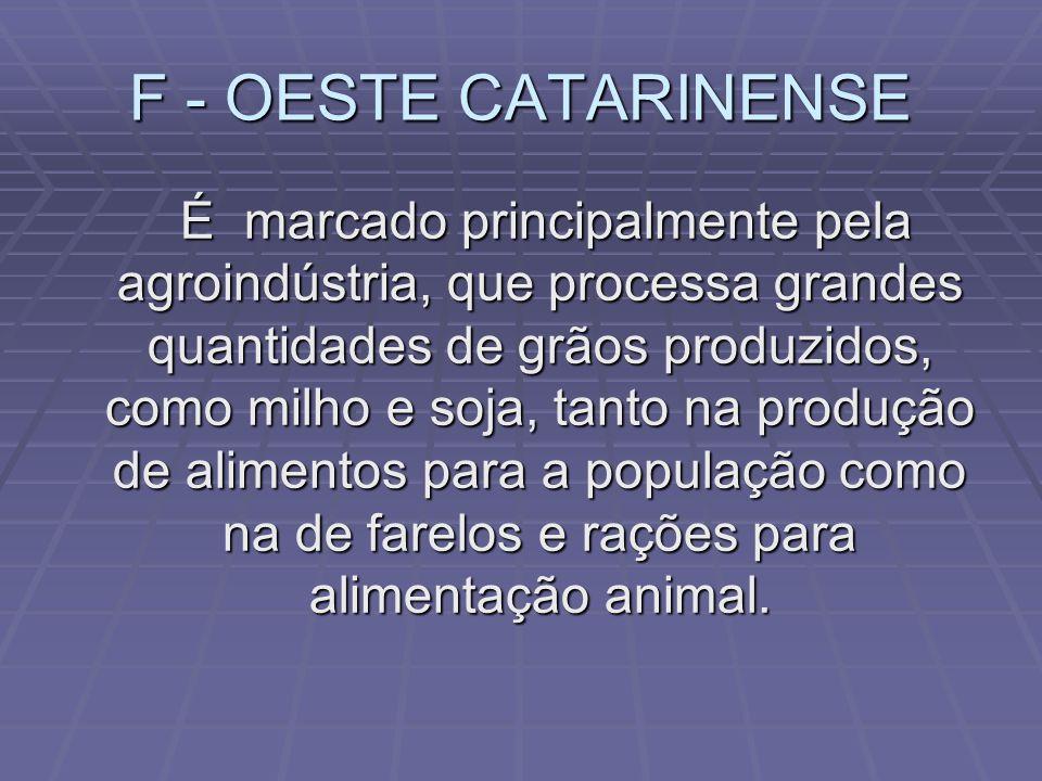 F - OESTE CATARINENSE
