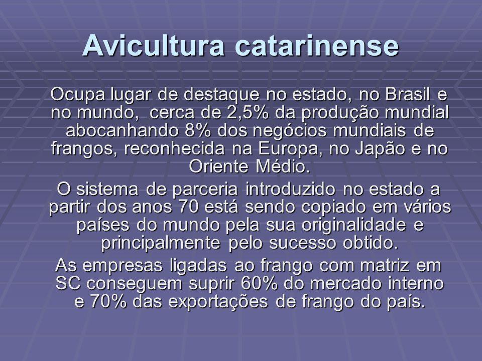Avicultura catarinense