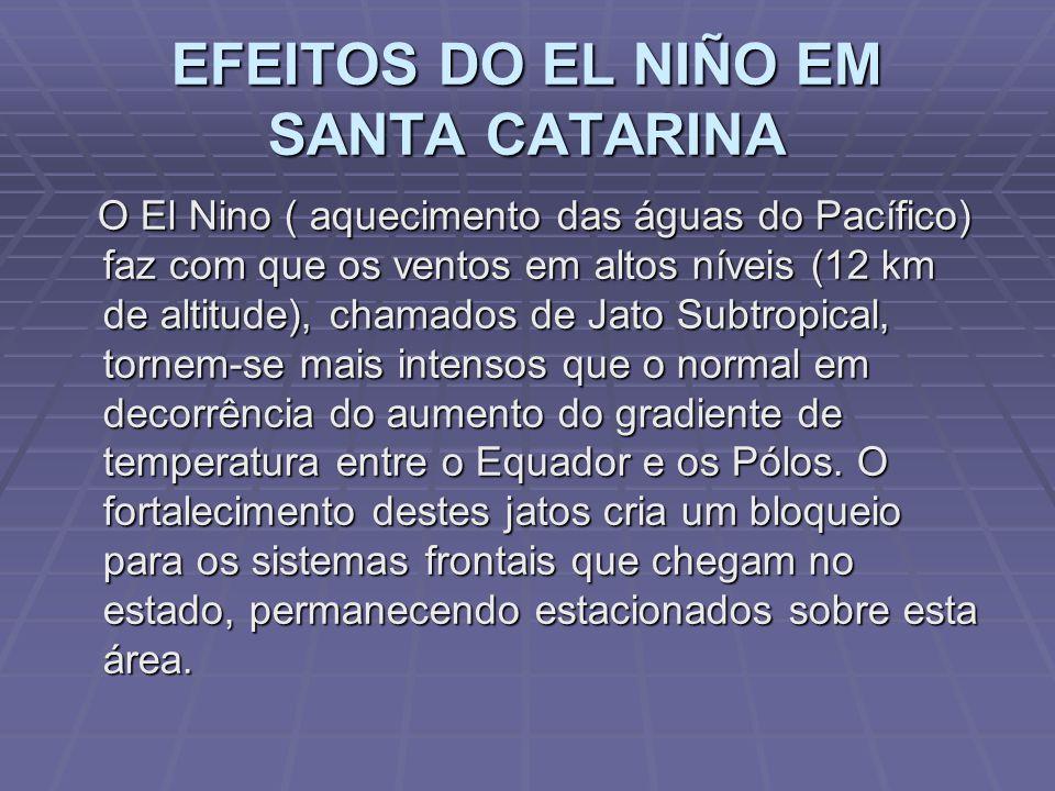 EFEITOS DO EL NIÑO EM SANTA CATARINA