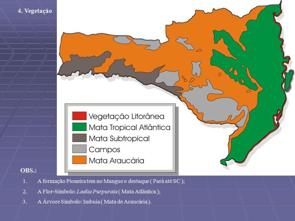 4. Vegetação OBS.: A formação Pioneira tem no Mangue o destaque ( Pará até SC ); A Flor-Símbolo: Laelia Purpurata ( Mata Atlântica );
