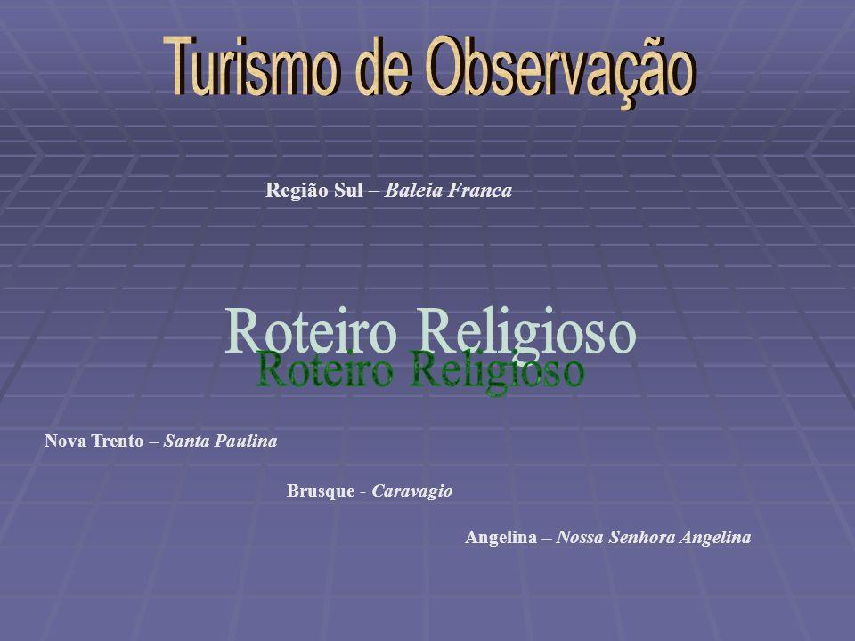 Turismo de Observação Roteiro Religioso Região Sul – Baleia Franca