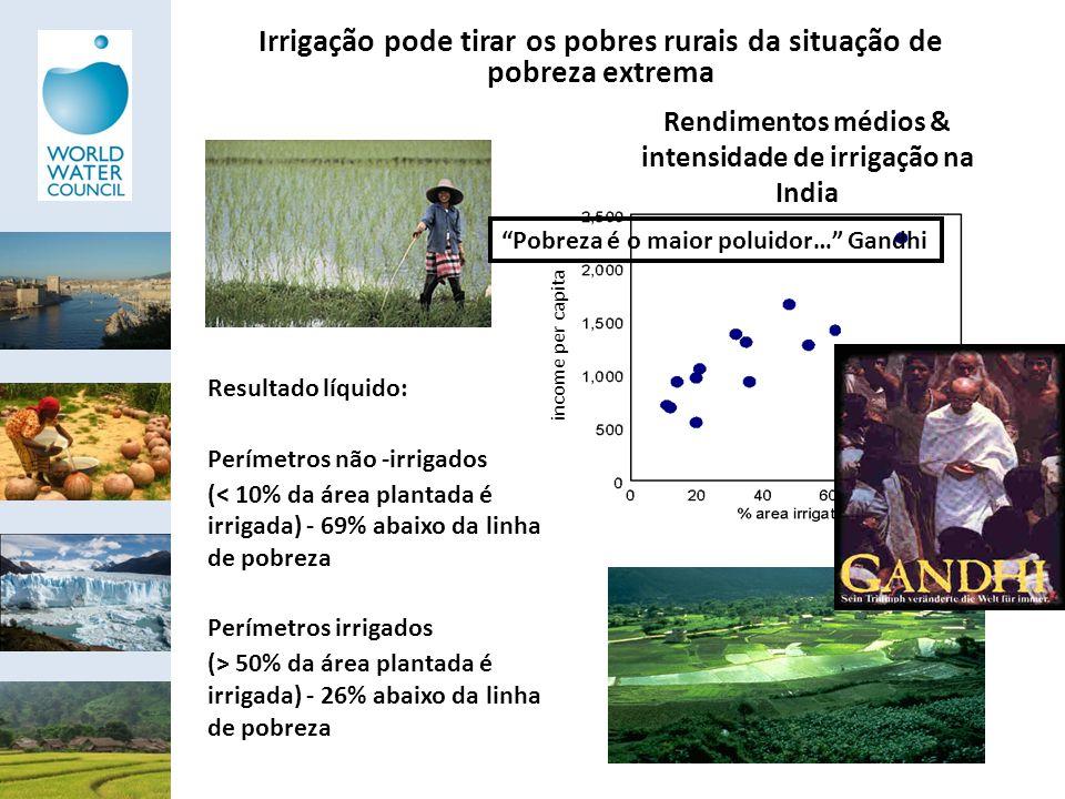 Irrigação pode tirar os pobres rurais da situação de pobreza extrema