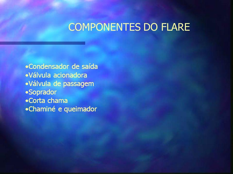 COMPONENTES DO FLARE Condensador de saída Válvula acionadora