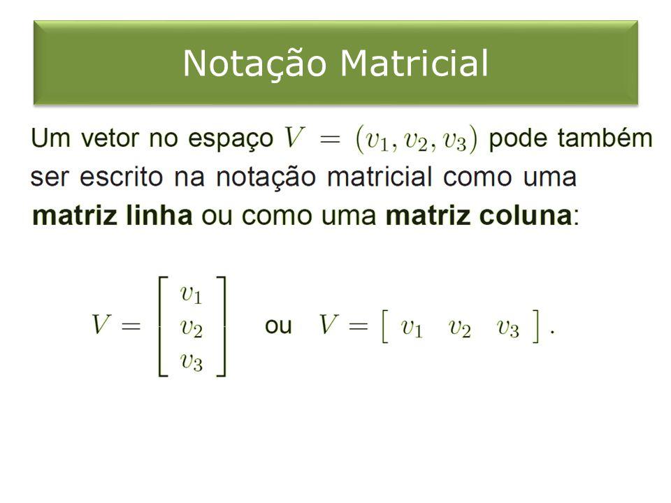 Notação Matricial