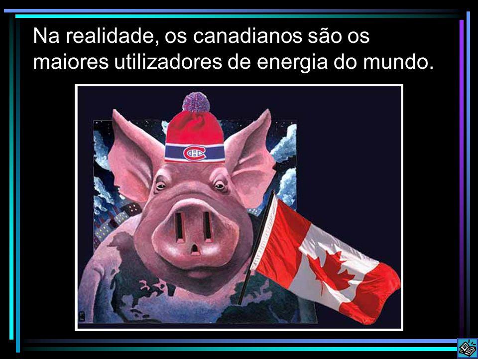 Na realidade, os canadianos são os maiores utilizadores de energia do mundo.