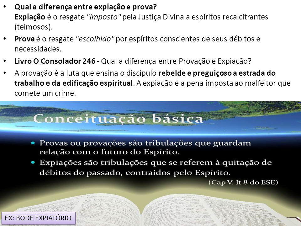 Livro O Consolador 246 - Qual a diferença entre Provação e Expiação