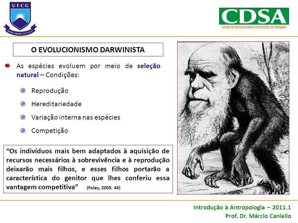 O EVOLUCIONISMO DARWINISTA
