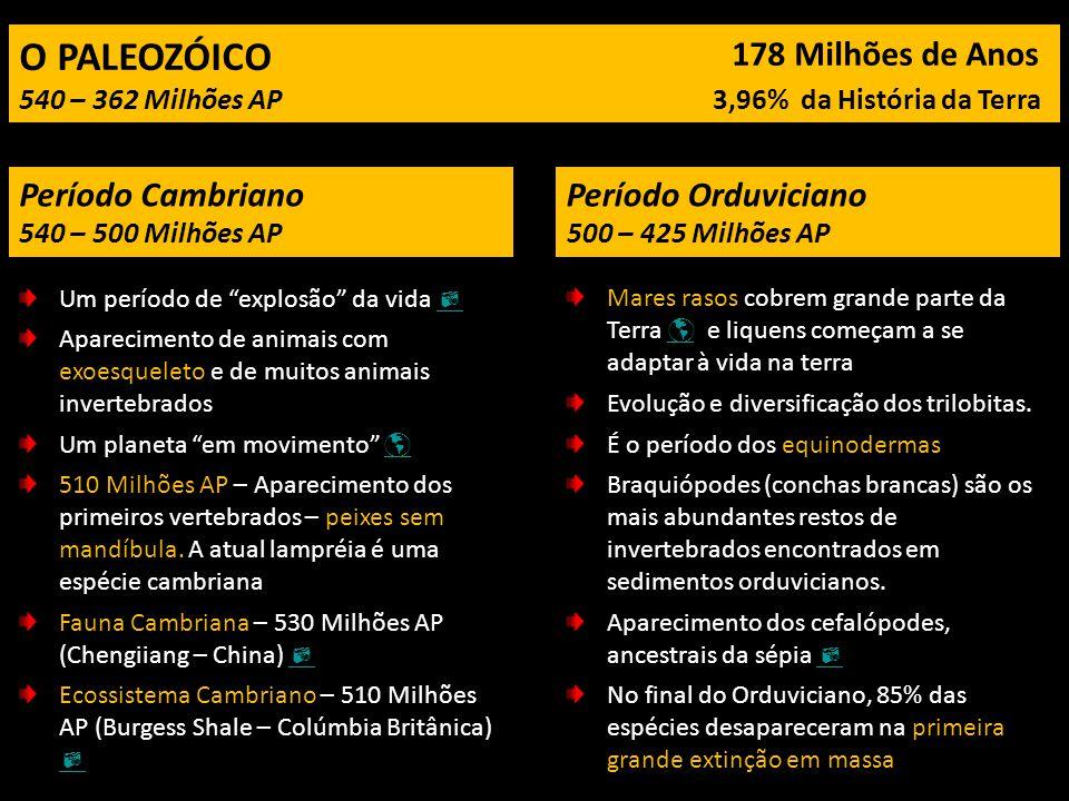 O PALEOZÓICO 178 Milhões de Anos Período Cambriano Período Orduviciano