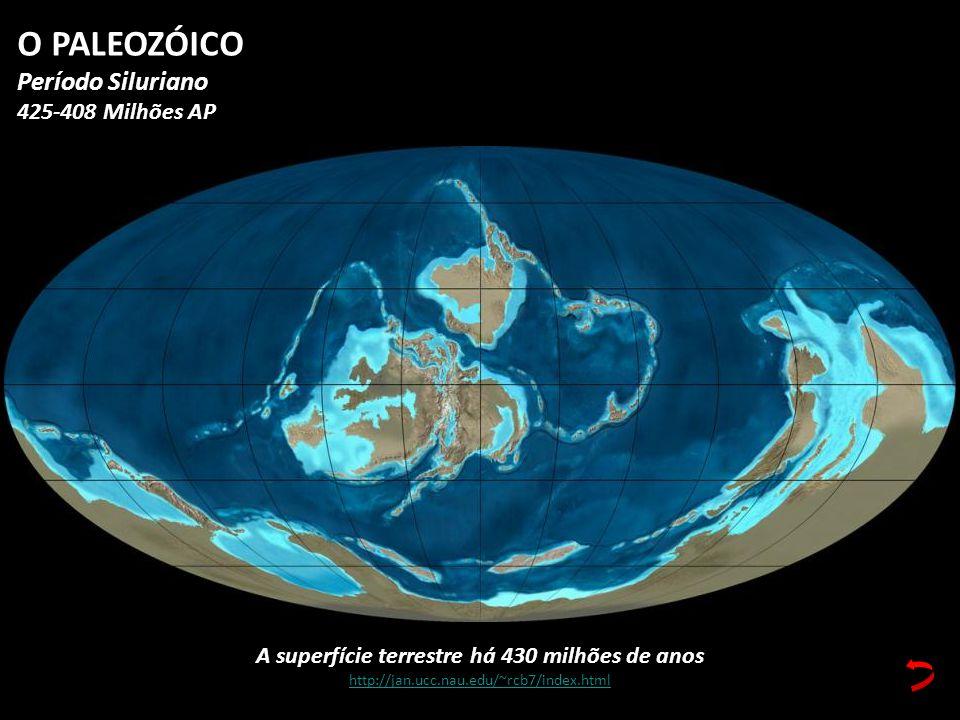 A superfície terrestre há 430 milhões de anos