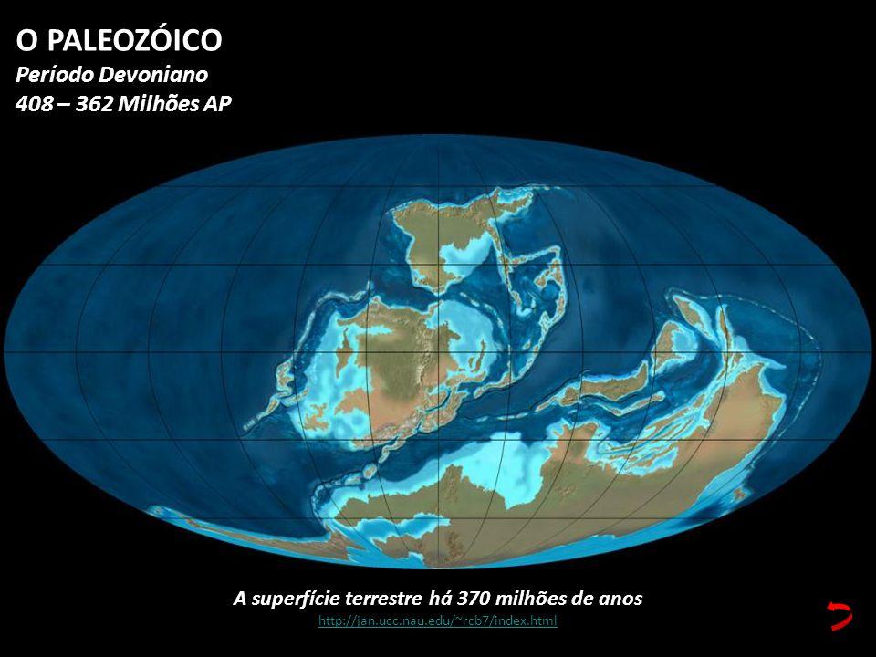 A superfície terrestre há 370 milhões de anos