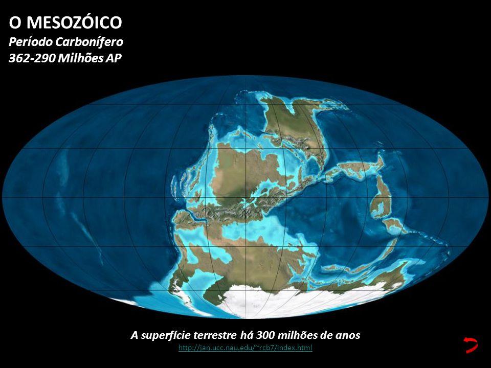 A superfície terrestre há 300 milhões de anos