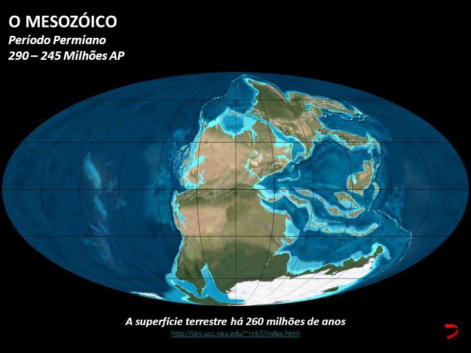 A superfície terrestre há 260 milhões de anos