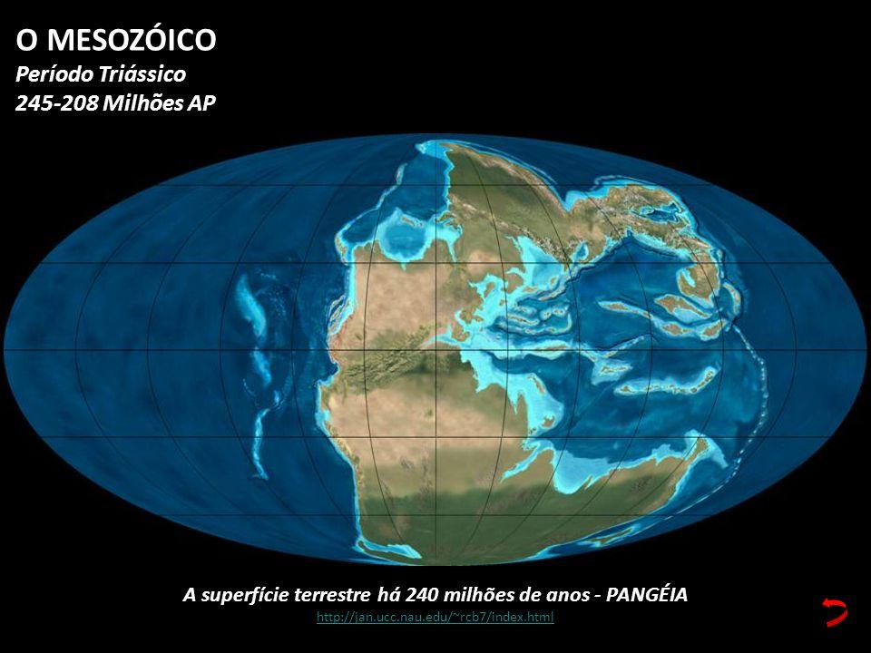 A superfície terrestre há 240 milhões de anos - PANGÉIA