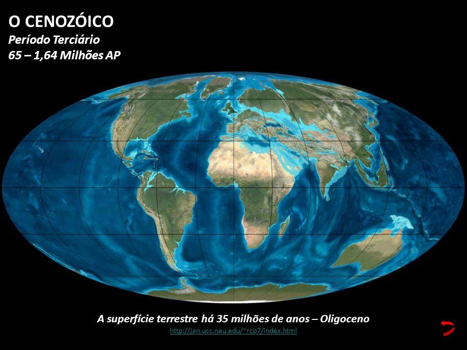 A superfície terrestre há 35 milhões de anos – Oligoceno