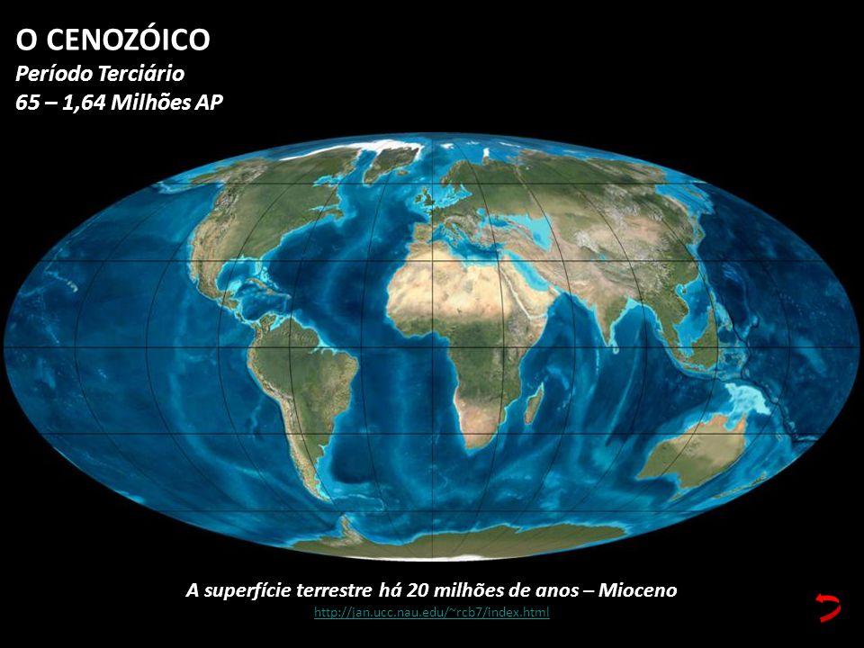 A superfície terrestre há 20 milhões de anos – Mioceno