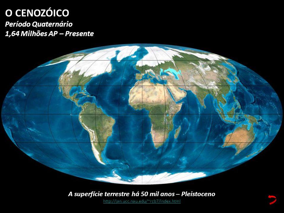A superfície terrestre há 50 mil anos – Pleistoceno