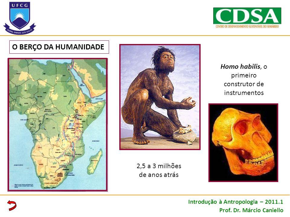 Homo habilis, o primeiro construtor de instrumentos