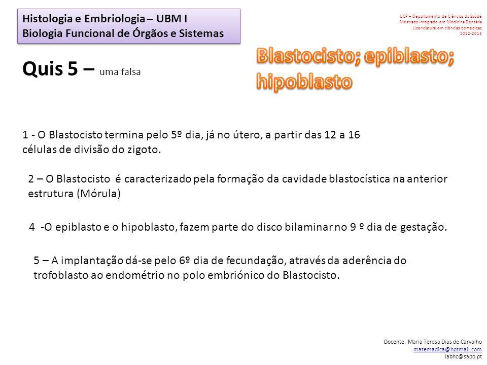 Blastocisto; epiblasto; hipoblasto Quis 5 – uma falsa