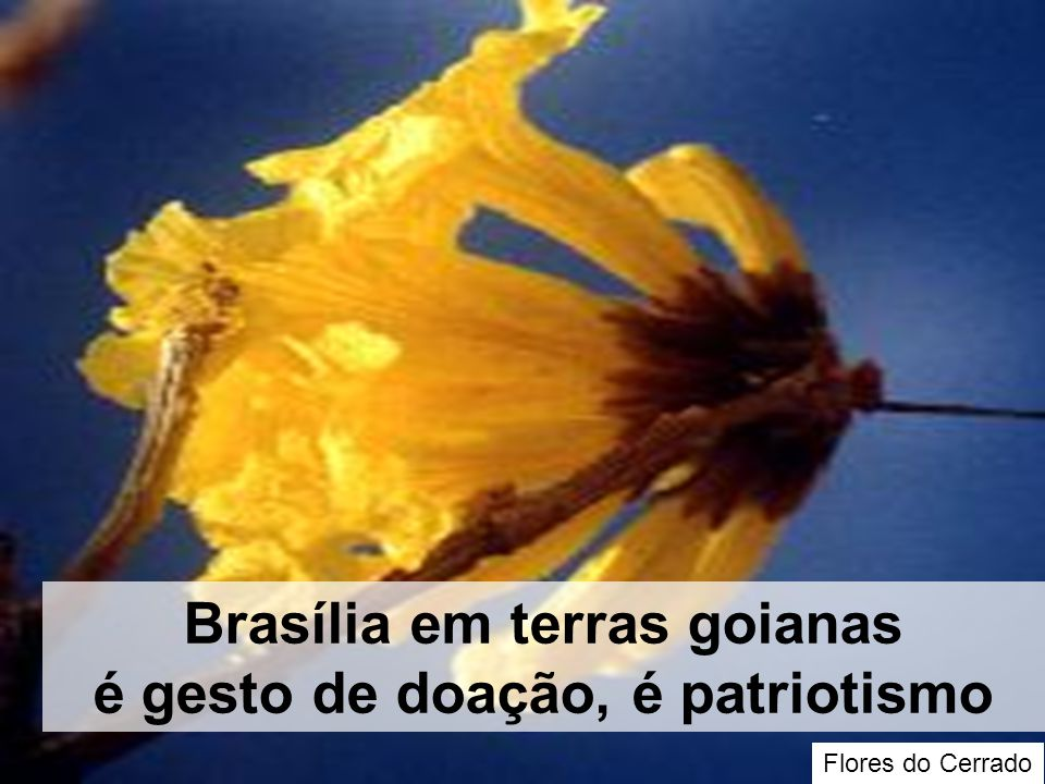 Brasília em terras goianas é gesto de doação, é patriotismo