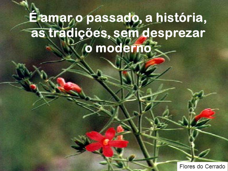 É amar o passado, a história, as tradições, sem desprezar