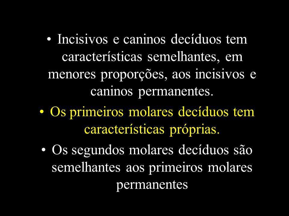 Os primeiros molares decíduos tem características próprias.