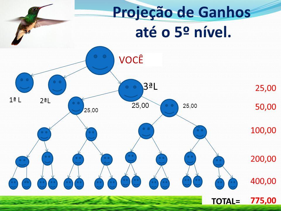 Projeção de Ganhos até o 5º nível.